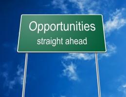 Freelance Opportunities